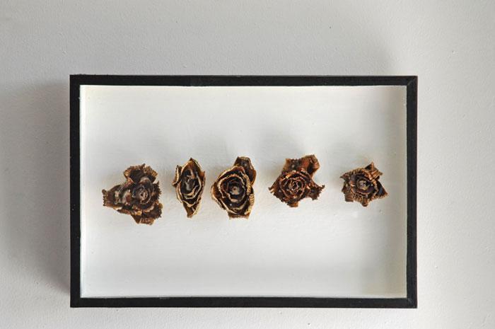 Végétaux, boîte d'entomologiste, cire d'abeille,<br />25 x 38 x 5 cm
