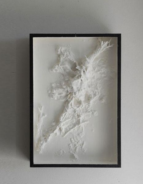 Salade montée, boîte d'entomologiste, peinture et cire d'abeille<br />25 x 38 x 5 cm