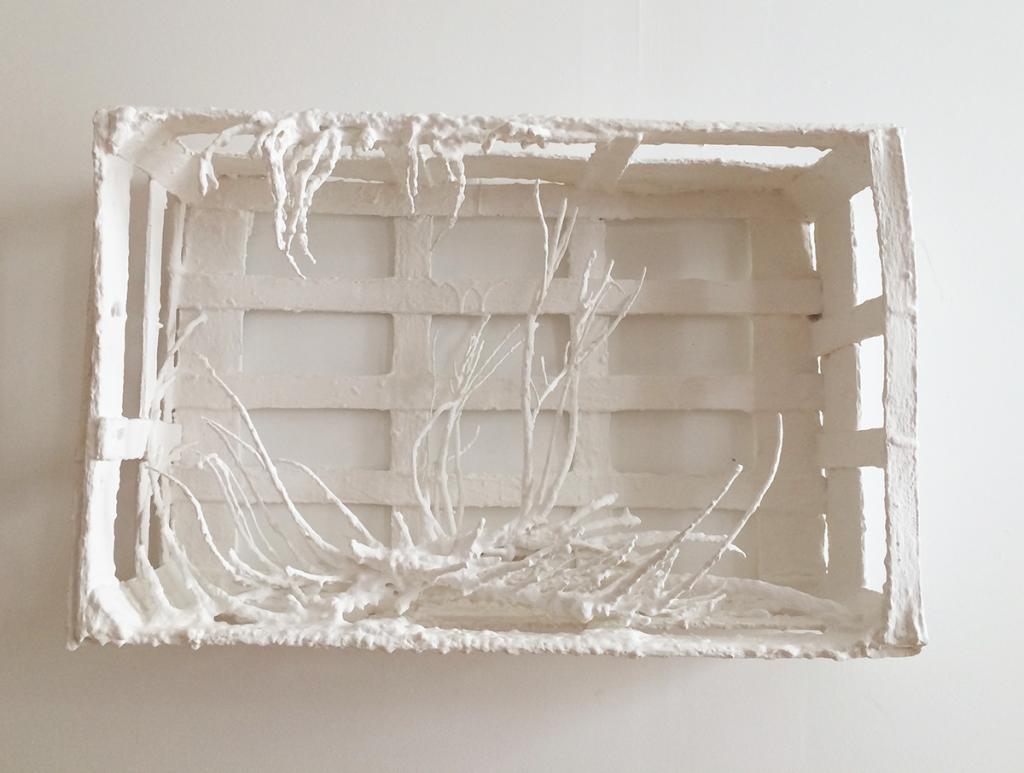 n°176, romarin, cageot, cire d'abeille, peinture, 61 x 19 x 23<br />2000-2006, Galerie l'Antichambre, Chambéry